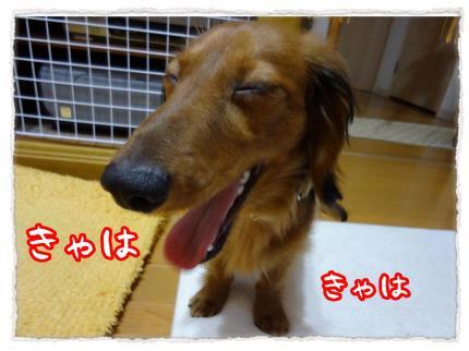 2012_5_28_7_convert_20120528231440.jpg