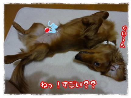 2012_5_29_4_convert_20120529223734.jpg