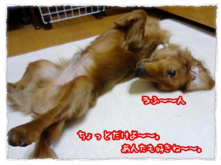 2012_5_29_7_convert_20120529225325.jpg