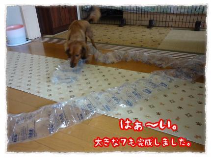 2012_5_2_5_convert_20120502231043.jpg