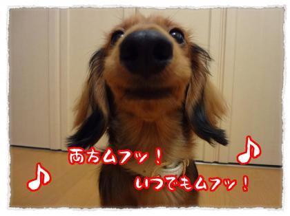 2012_5_30_10_convert_20120530233354.jpg