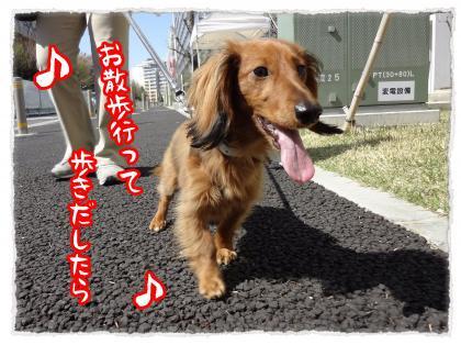 2012_5_30_1_convert_20120530233028.jpg