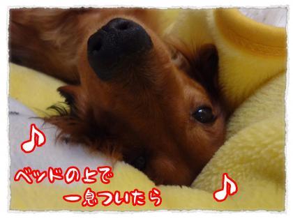 2012_5_30_3_convert_20120530233135.jpg