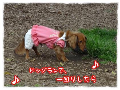 2012_5_30_5_convert_20120530233228.jpg