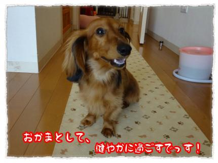 2012_5_5_1_convert_20120505220054.jpg