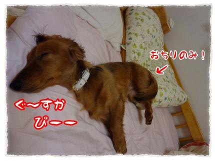 2012_5_5_6_convert_20120505220447.jpg