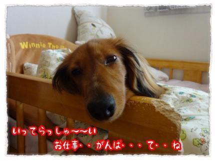 2012_5_8_7_convert_20120508224840.jpg