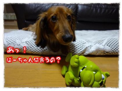 2012_5_9_1_convert_20120509225421.jpg