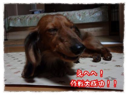 2012_5_9_8_convert_20120509225722.jpg