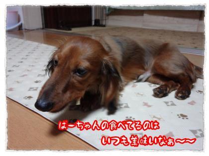 2012_5_9_9_convert_20120509225746.jpg