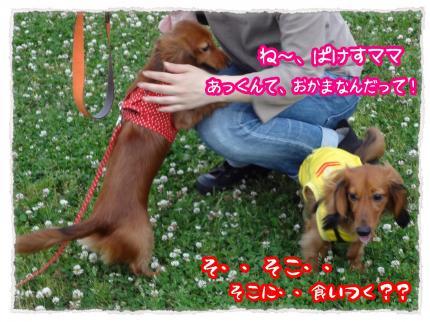 2012_6_11_5_convert_20120611232012.jpg