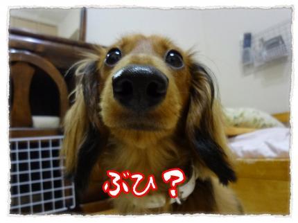 2012_6_14_2_convert_20120614231555.jpg