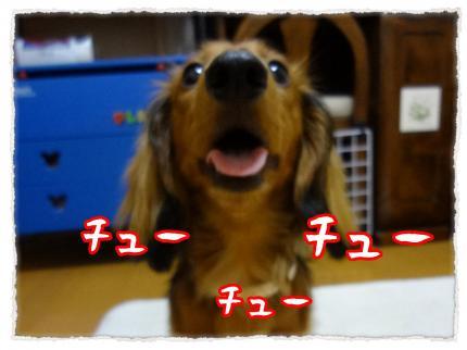 2012_6_14_3_convert_20120614231629.jpg