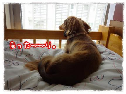 2012_6_14_6_convert_20120614231723.jpg