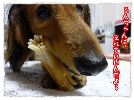 2012_6_16_7_convert_20120616232734.jpg