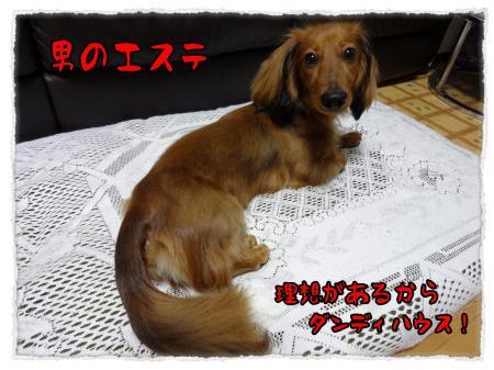 2012_6_16_8_convert_20120616232757.jpg