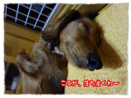 2012_6_19_11_convert_20120619231110.jpg