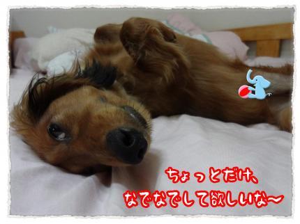 2012_6_19_1_convert_20120619230650.jpg