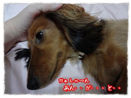 2012_6_19_2_convert_20120619230841.jpg