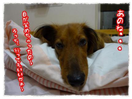 2012_6_19_3_convert_20120619230902.jpg