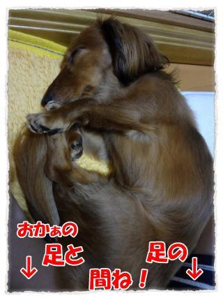 2012_6_19_5_convert_20120619230941.jpg