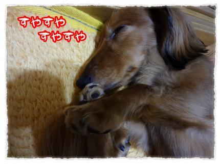 2012_6_19_6_convert_20120619231002.jpg