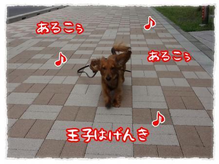 2012_6_20_1_convert_20120620234058.jpg