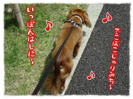 2012_6_20_4_convert_20120620234229.jpg
