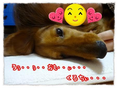 2012_6_21_1_convert_20120621224504.jpg