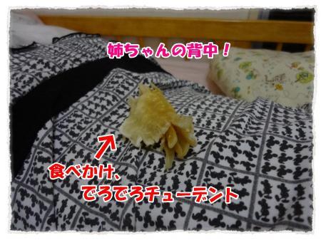 2012_6_21_7_convert_20120621224836.jpg