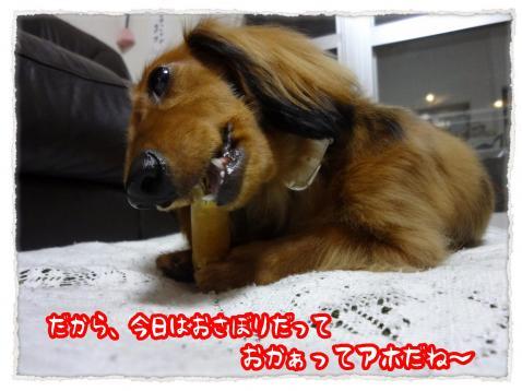 2012_6_22_3_convert_20120622231242.jpg