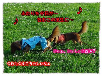 2012_6_27_1_convert_20120627225758.jpg
