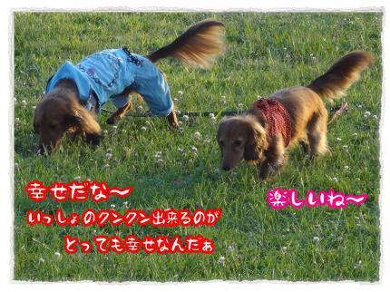 2012_6_27_5_convert_20120627225940.jpg