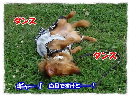2012_6_28_7_convert_20120627235706.jpg