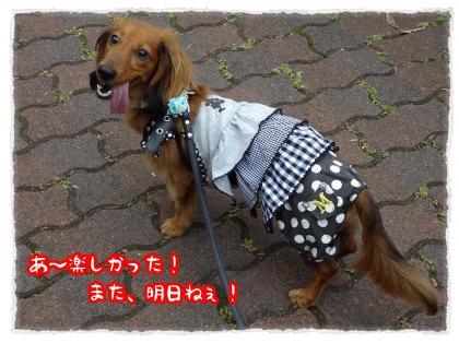 2012_6_28_9_convert_20120627235747.jpg