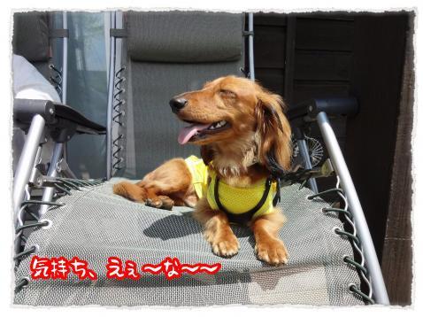 2012_6_4_3_convert_20120604235705.jpg