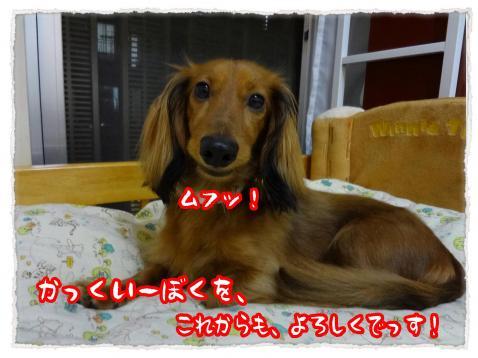 2012_7_10_2_convert_20120710233323.jpg