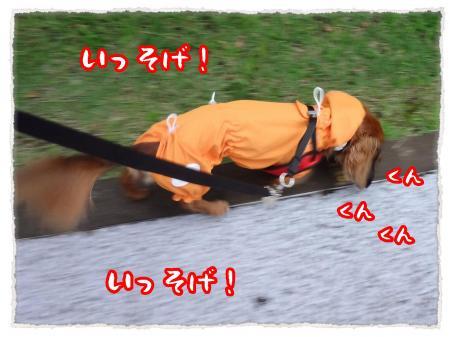 2012_7_12_2_convert_20120712230435.jpg