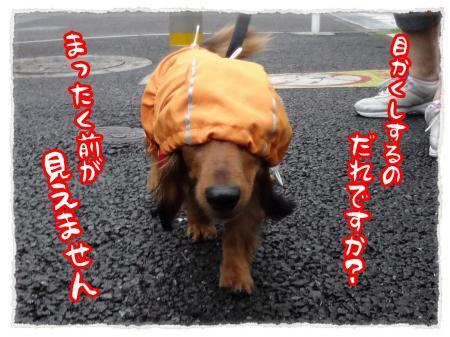 2012_7_12_4_convert_20120712230513.jpg