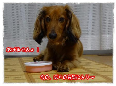 2012_7_14_1_convert_20120714232228.jpg