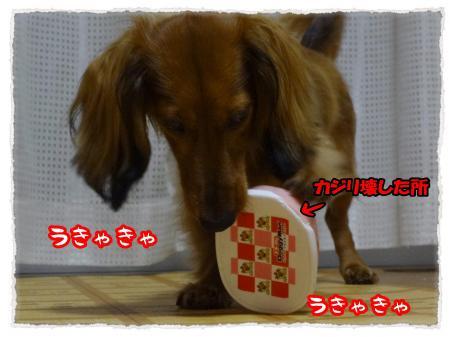 2012_7_14_2_convert_20120714232314.jpg