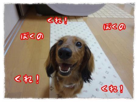 2012_7_14_4_convert_20120714232350.jpg
