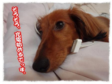 2012_7_14_6_convert_20120714232424.jpg