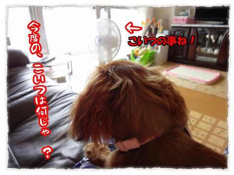 2012_7_15_1_convert_20120715223643.jpg