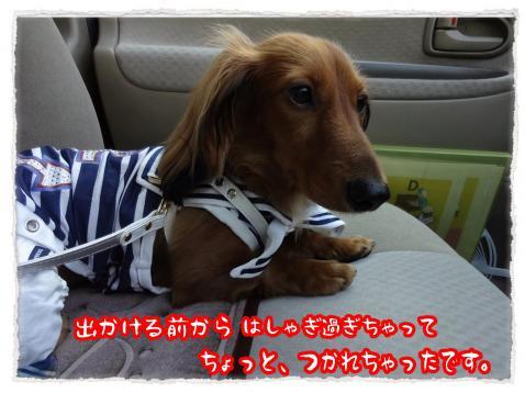 2012_7_16_12_convert_20120716235420.jpg