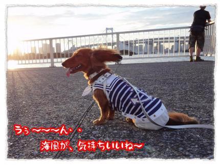 2012_7_17_1_convert_20120717231742.jpg