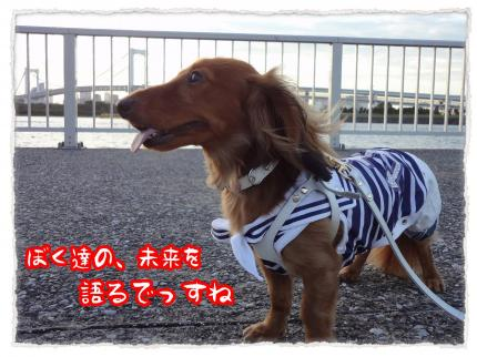 2012_7_17_4_convert_20120717231915.jpg