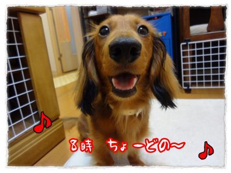 2012_7_19_1_convert_20120719231055.jpg