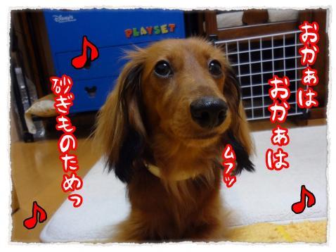2012_7_19_3_convert_20120719231217.jpg