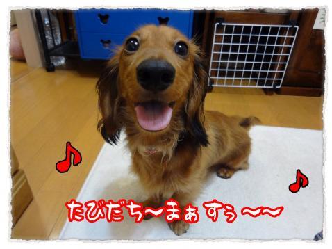 2012_7_19_5_convert_20120719231237.jpg